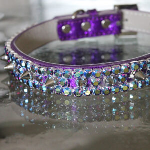Heavy Metal Spiked Pet Collar - Prince Inspired