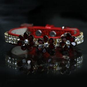 Aquarius RGlam Rock - Van Halen Inspired Jewelry Collar ock Star Pet Collar