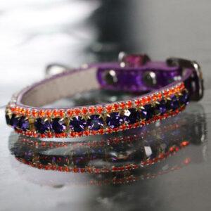 Inner Harmony Pet Collar - Brow Chakra Inspired