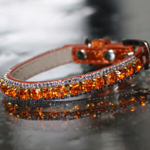 Inner Harmony Pet Collar - Sacral Chakra Inspired