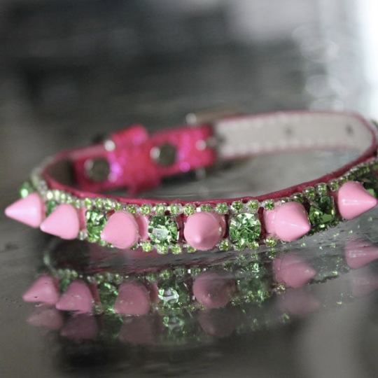 Pop Rock Star Pet Collar - Katy Perry Inspired