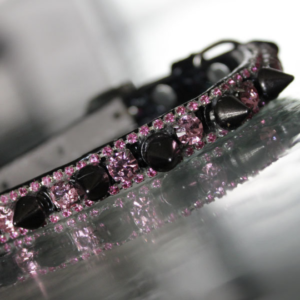 Pop Rock Star Pet Collar - Rihanna Inspired
